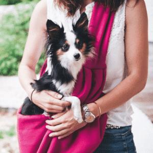 Plecaki, torby i transportery dla psa